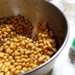 納豆作りのために蒸した大豆に納豆菌を混ぜている写真