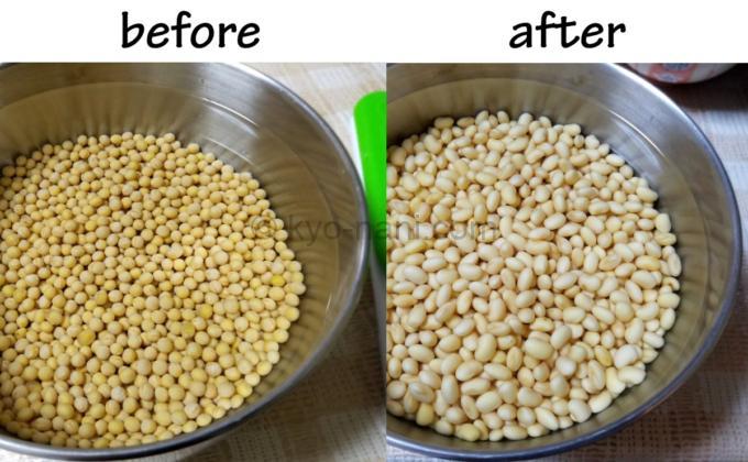 スズマル大豆を水に浸けた直後と24時間後を比べた写真