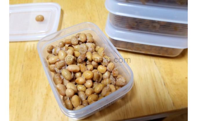 手作りの納豆を小さいタッパーに分けている写真